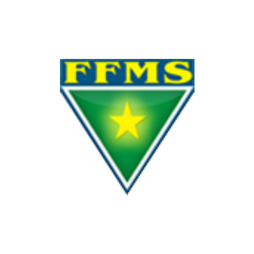 TV FFMS