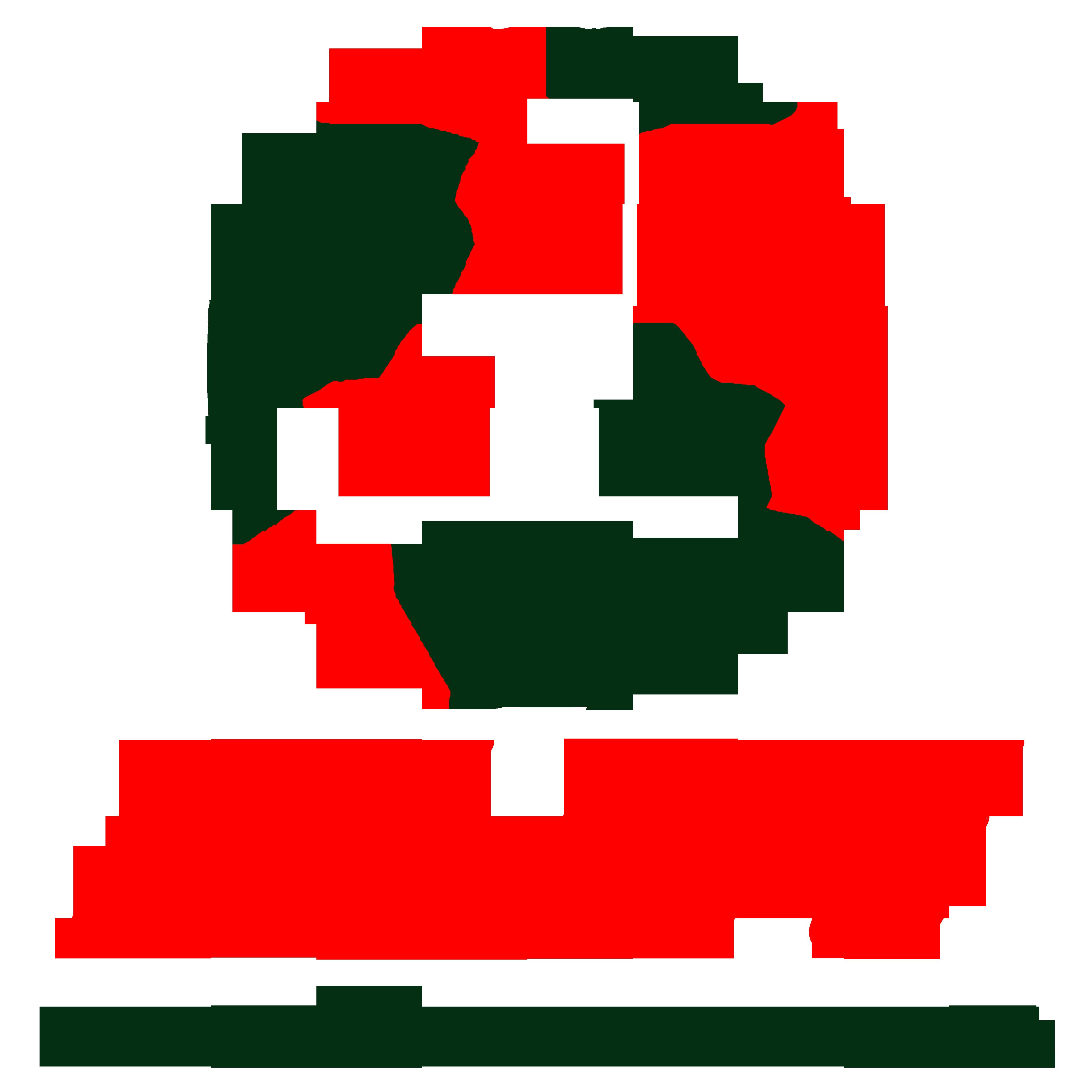 Federacion Latina de Futbol