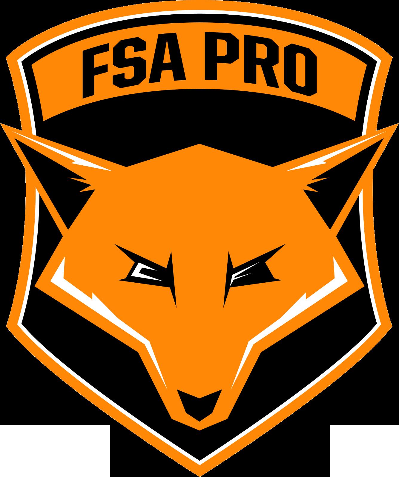 Fox Soccer Academy